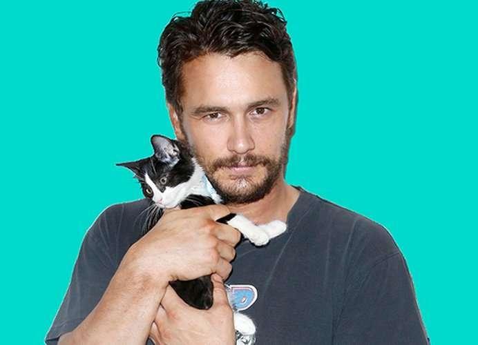 Мурлыкающий Голливуд: звезды и их кошки
