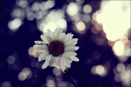 Красивые фотографии с эффектом